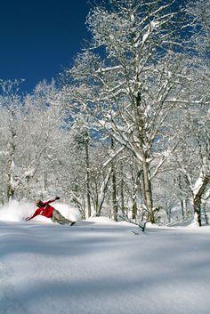 Furano resort powder snow in Japan