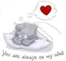 Tatty Teddy ~ you always on my mind Teddy Bear Quotes, My Teddy Bear, Cute Teddy Bears, Tatty Teddy, Cute Images, Cute Pictures, Teddy Bear Pictures, Blue Nose Friends, Love Bear