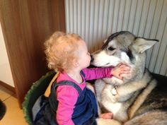 My baby and my husky