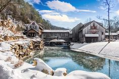 Have you seen every season of Dogwood Canyon? Check out the seasonal activities and see how the canyon changes during the winter. Dogwood Canyon, Have You Seen, Trout Fishing, Horseback Riding, Great Places, Acre, Tours, Seasons, Activities
