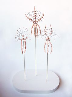 """Contemporary Jewellery, Anatomical Cabinet of Curiosities by ANKE DE KORT-BE  """"My first collection represents an Anatomical Cabinet of Curiosities. The specimens that are part of this cabinet originate from a time or place where jewellery has its own anatomy, or occurs as part of the human body."""""""