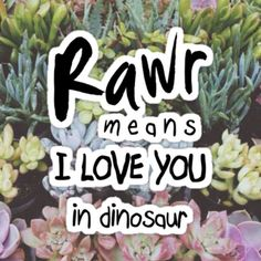 Rawr means I love you in dinosaur.