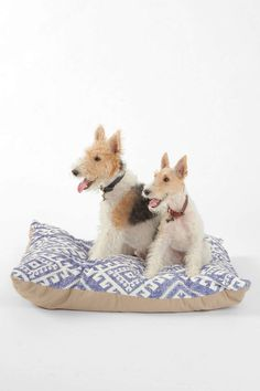 a pet bed for Phlora's room for Bocci at Urban Outfitters-Holli Zollinger For DENY Shakami Denim Pet Bed