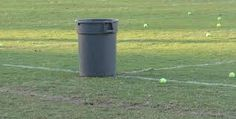 Lysosomes - The trash cans at football fields have trash cans that recycles foods and chemicals Definition - Recycles break down food molecules and destroy worn out cell structures