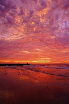 """sundxwn: """" Sunrise of Pink, Yellow and Blue by Kevin Reynolds """""""