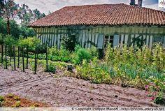 Maison du maître : petit jardin (Écomusée de Marquèze - Landes, Aquitaine)