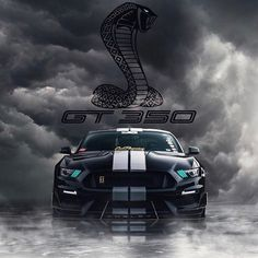 Shelby Gt 500, Shelby Car, Ford Mustang Wallpaper, Ford Ranger Wildtrak, Mustang Cobra, Best Luxury Cars, Mercedes Benz Cars, Sexy Cars, Car Pictures