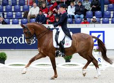 "Charlotte Dujardin ""the New Isabell… the New Future of Dressage"" –Carl Hester – Part 2 – Dressage-News"
