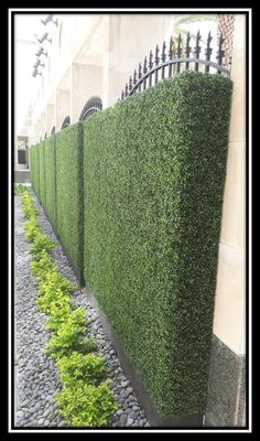 Artificial Boxwood Hedge Panels - Modern Farmhouse Décor — Boxwood Brothers - Our Products — Boxwood Brothers The Effective Pictures We Offer You About decoration bureau A qu - Boxwood Landscaping, Boxwood Hedge, Front Yard Landscaping, Boxwood Garden, Bamboo Hedge, Privet Hedge, Driveway Landscaping, Landscaping Company, Landscaping Ideas