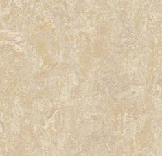 "Sand 79"" Wide Marmoleum Real"