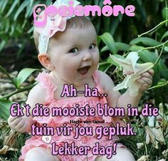 Good Morning Messages, Good Morning Wishes, Good Morning Quotes, Lekker Dag, Afrikaanse Quotes, Goeie Nag, Goeie More, Special Quotes, Love Rose