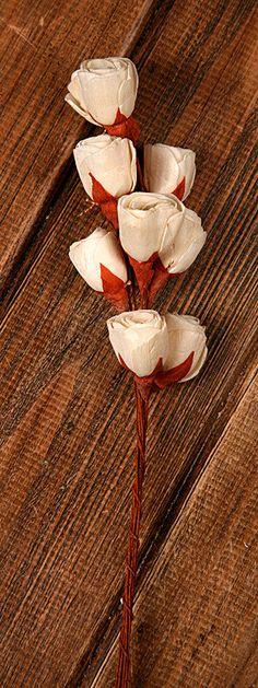 Lily midi na druciku 30 szt   ozdoby na piku WALENTYNKI Dekoracje z sercem kwiaty sola \ białe kwiaty sola \ piki WIOSNA \ susz dekoracyjny OZDOBY DEKORACJE NA LATO \ letnie sola OZDOBY DEKORACJE ŚLUBNE KOMUNIJNE \ pozostałe JESIEŃ - SUSZ EGZOTYCZNY \ kwiaty sola Dzień Babci i Dziadka - Hurtownia Florystyczna Internetowa - Artykuły Florystyczne - Kwiaty sztuczne