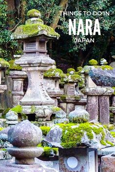 Read our local's guide of top things to do in Nara. From temples, to deer park and amazing food we share the best tips to make the most of your trip to Nara Japan Destinations, Japan Travel Tips, Asia Travel, Travel Ideas, Japan Architecture Modern, Garden Architecture, Kyoto, Japanese Travel, Japan Garden