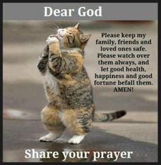 Does your cat pray for you?