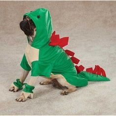 Simply Silver - Dogosaurus Dog Halloween Costume Dinosaur Pet New Casual Canine (L) *** You can get additional details at the image link. (This is an affiliate link) #DogApparelAccessories