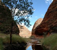 Ord River Kununurra Western Australia