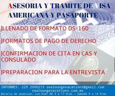 Información 229 2000213