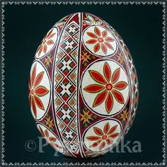 Real Ukrainian Pysanky. Chicken Pysanka. Roman