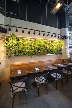 This is similar to my idea of a wooden bench seat with a green living wall about. I think I will make my green wall bigger though. Directional track lighting helps make the green wall a feature Coffee Shop Interior Design, Restaurant Interior Design, Cafe Design, Design Shop, Resturant Interior, Small Restaurant Design, Decoration Restaurant, Deco Restaurant, Organic Restaurant