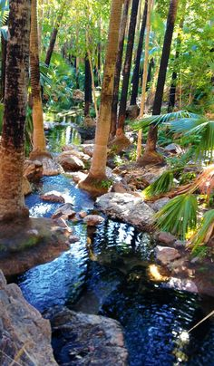 11 natural spa baths of uncommon beauty