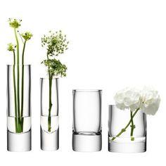 E Flowers, Green Flowers, Green Plants, Flower Art, Planting Flowers, Beautiful Flowers, Floral Arrangements, Flower Arrangement, Language Of Flowers