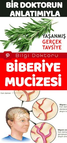 Believe in the Miracle of Rosemary. Experienced Real Advice - Information Optimizer - Bilgi Doktoru - - Believe in the Miracle of Rosemary. Experienced Real Advice - Information Optimizer - Bilgi Doktoru Rosemary Tea, Rosemary Plant, Health And Wellness, Health Tips, Health Fitness, Health Benefits, Herbal Remedies, Natural Remedies, Health Super