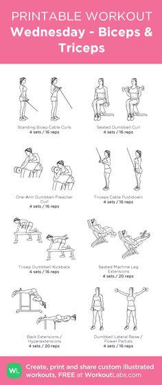Wednesday - Biceps & Triceps