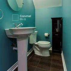 ¿Quieres saber cómo luciría tu baño con estos #COLORES? Prueba nuestro Decorador Virtual y averígualo.