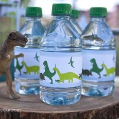 Water Bottle Labels ~ Dinosaur Dig Printable Birthday Party