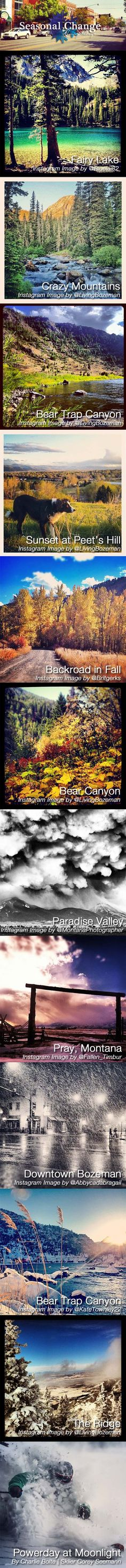 Image collection showing the changing seasons in the Bozeman, Montana area. Photographs from Fairy Lake, Bear Trap Canyon, Downtown Bozeman, Crazy Mountains, Peet's Hill, Bear Canyon, Paradise Valley, Moonlight Basin, and Bridger Bowls Ridge.