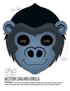 Western Lowland Gorilla Mask | Zoo New England                                                                                                                                                                                 More