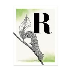 Buchstabe R wie Raupe - ein & alles Wandkunst für Kinder Design, Home Decor, Paper, Letter F, Name Day, Respect Activities, Caterpillar, Great Gifts, Dekoration