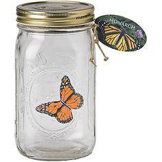 decorar con mariposas | Decoratrix | Decoración, diseño e interiorismo