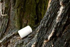 나무 위 약통