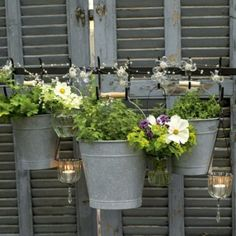 Garden Design Grey painted fence made out of reclaimed shutters - Garden fence ideas. A good garden fence can have more impact than you might imagine - here are some easy to achieve ideas for beautiful garden fences Outdoor Planters, Garden Planters, Outdoor Gardens, Potted Garden, Outdoor Potted Plants, Courtyard Gardens, Balcony Gardening, Wall Planters, Water Garden