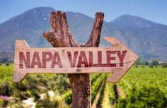 Two 'cult' wines battle it out over name usage Sauvignon Blanc, Cabernet Sauvignon, Malbec, Pinot Noir, San Pablo Bay, Margaret River Wineries, Wine News, Napa Valley Wine