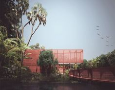 louise bjornskov schmidt bartlett graduate rainforest walkway panama