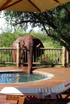 Etali Safari Lodge -