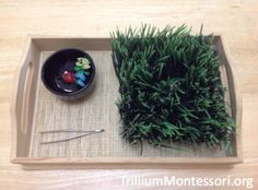 9 Spring and Easter themed activities for preschoolers to develop fine motor skills. Including spooning, pouring, tong transfer and more. Montessori Toddler, Montessori Activities, Classroom Activities, Preschool Activities, Montessori Materials, Preschool Classroom, Classroom Ideas, Motor Skills Activities, Fine Motor Skills
