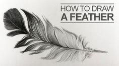 Learn how to draw a feather in this lesson. Use shape, line, and value to create the illusion of texture. #feather #drawing