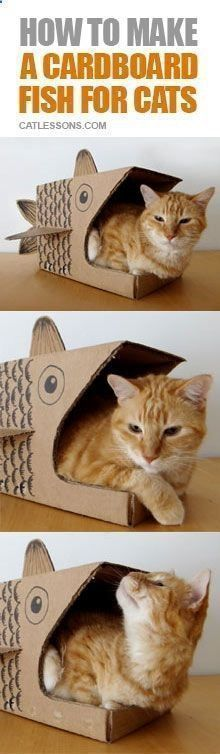 Cats Toys Ideas - ♥ Cat Care Tips ♥ Simple DIY to make a cool home shelter for your cat - Ideal toys for small cats #DIYcattoysforhome #cattips #didcattoys