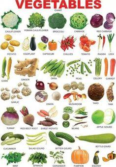 Vegetable I More Más Más