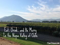 Eat, Drink, and Be Merry In the Napa Valley of Chile << you don't have to ask me twice!