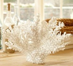 Shop faux white coral from Pottery Barn. Our furniture, home decor and accessories collections feature faux white coral in quality materials and classic styles. Coastal Style, Coastal Decor, Rustic Decor, Rustic Chair, Rustic Colors, Rustic Theme, Tropical Decor, Rustic Signs, Rustic Barn