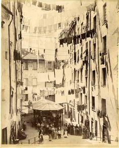 Italia, Costumi - Noack à Genova -Truddoli di Santa Brigida #Europe #Italia #Costumi_Types
