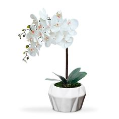 Arranjo de flores artificiais orquideas brancas em silicone real toque   O vaso cachepot em ceramica com design moderno da o acabamento perfeito para esse arranjo.  Não precisa ser regada. Não precisa ir ao sol. Não tem cheiro, o que a faz uma ótimaopção para osalérgicos, etambémpode ser levada a mesa sem que o cheiro interfiranocheiro da comida. Muito similar a natural. O que é um Arranjo Real Toque?  É um arranjo com flores de alta...
