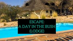 ESCAPE: A DAY IN THE BUSH (LODGE) – valerynangula.com Plan A Day Out, Hiding In The Bushes, Someone Like Me, Stones Throw, Champagne Bottles, Relaxing Day, Days Out, Wilderness, Lifestyle Blog