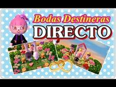 Boda Destinera, infor sorteo Mewtwo, Tomodachi new miis... - DIRECTO