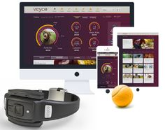 Voyce: Wearable Tech for your dog so that you can track his health! - 10 cool gadgets CES