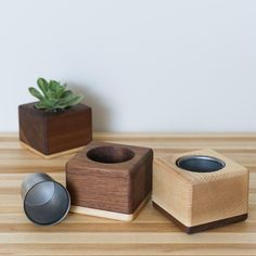 The Fillmore Succulent Planters - Hugo & Hoby Wooden Planter Boxes, Diy Planter Box, Succulent Planter Diy, Cedar Planters, Indoor Planters, Diy Planters, Succulents Diy, Hanging Planters, Galvanized Planters